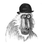 Day 18: Baboon in a Bowler Hat